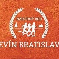 logo_devin_ba